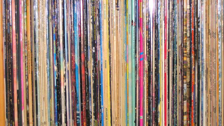 Vinyl Sleeves