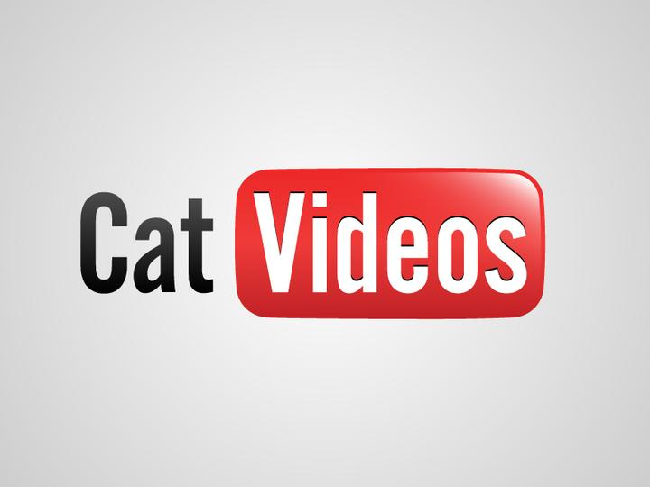 Cat Videos by Viktor Hertz