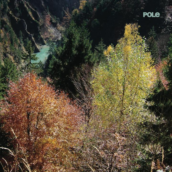 Pole Wald Cover