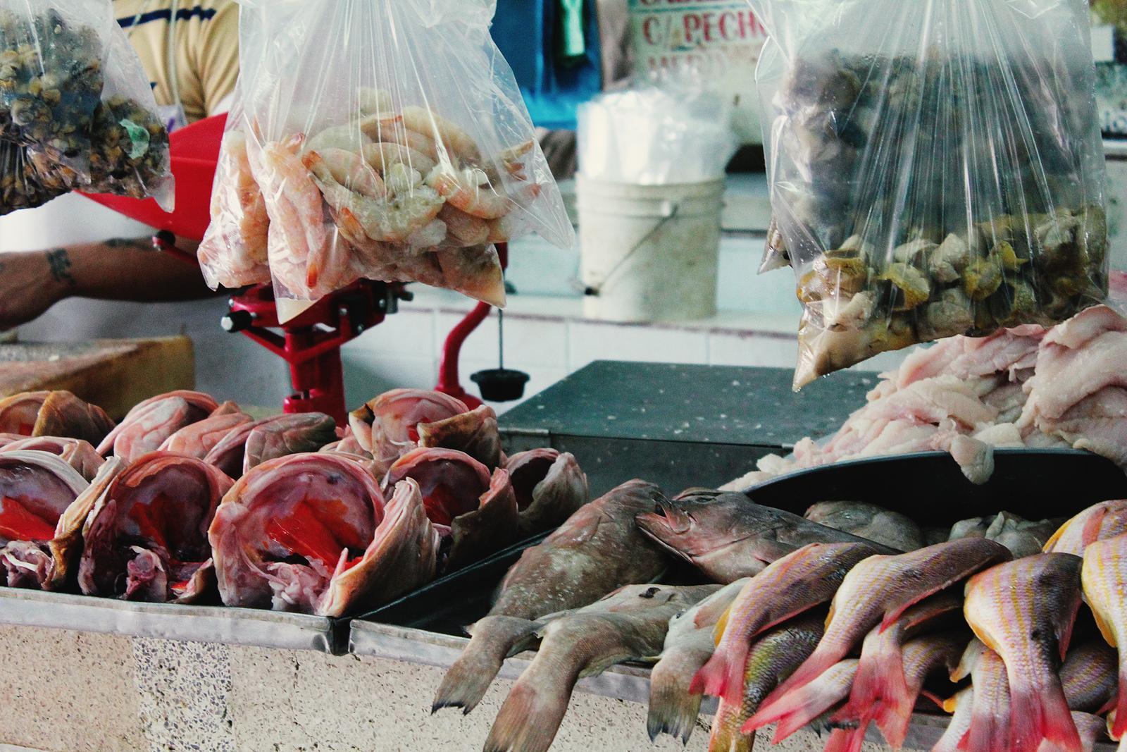 Mexiko Markt Merida Fisch