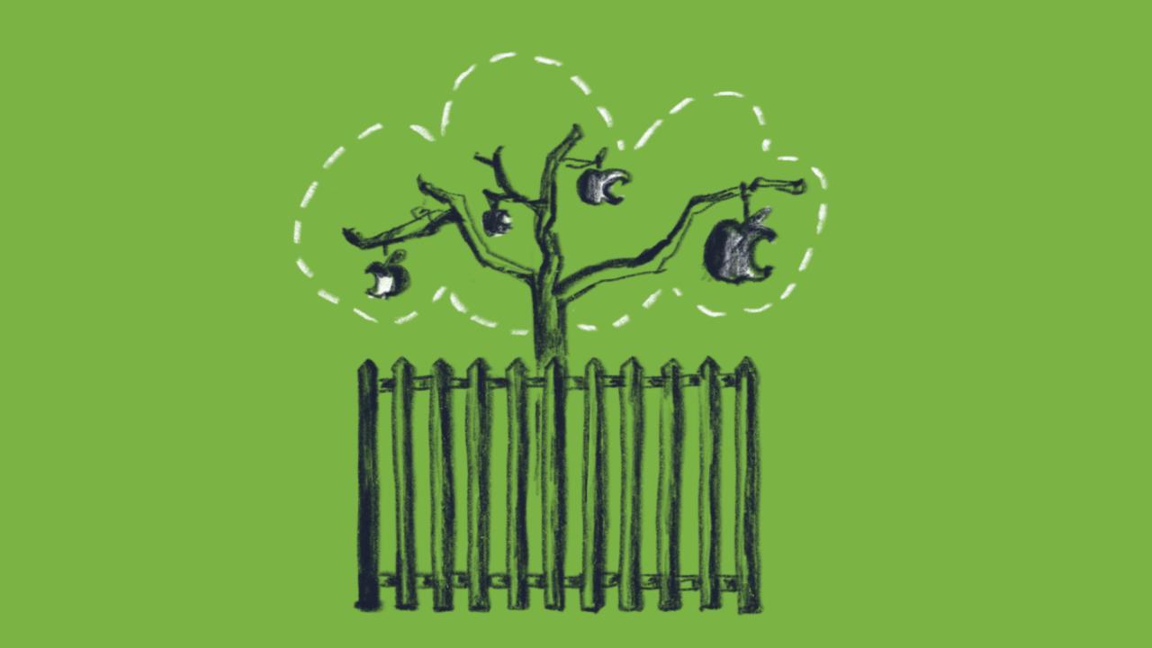UDC - Walled Garden Plattform Oekonomie