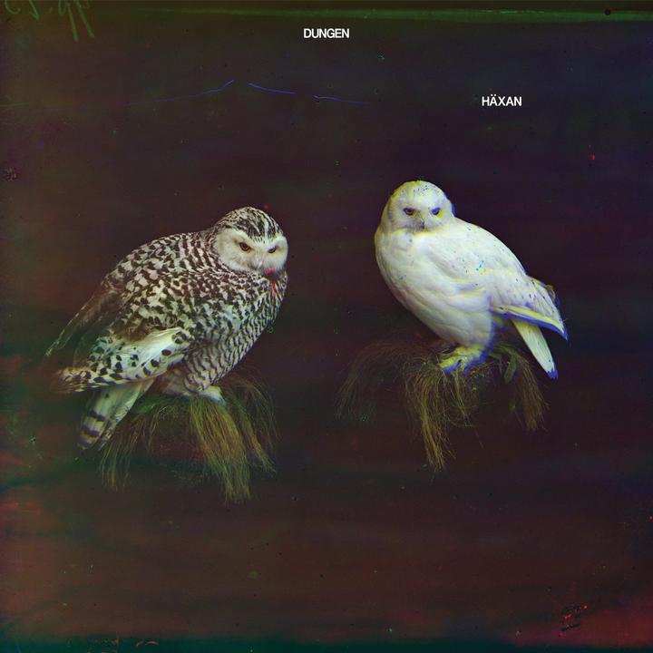 Dungen Häxan Cover WW14012017