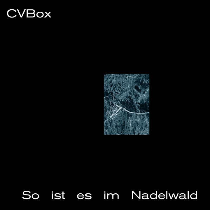CVBox - So ist es im Nadelwald Artwork