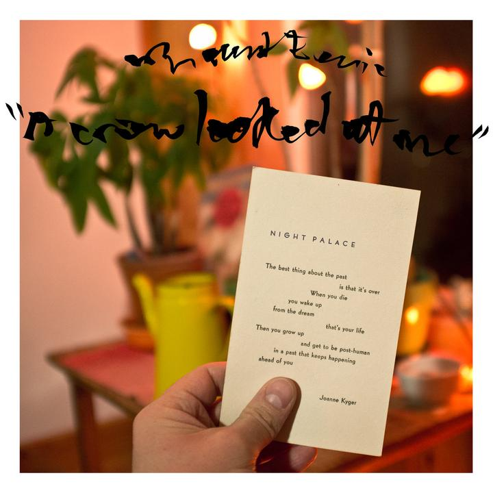 Mount Eerie A Crow Looked At Me Cover WW25032017