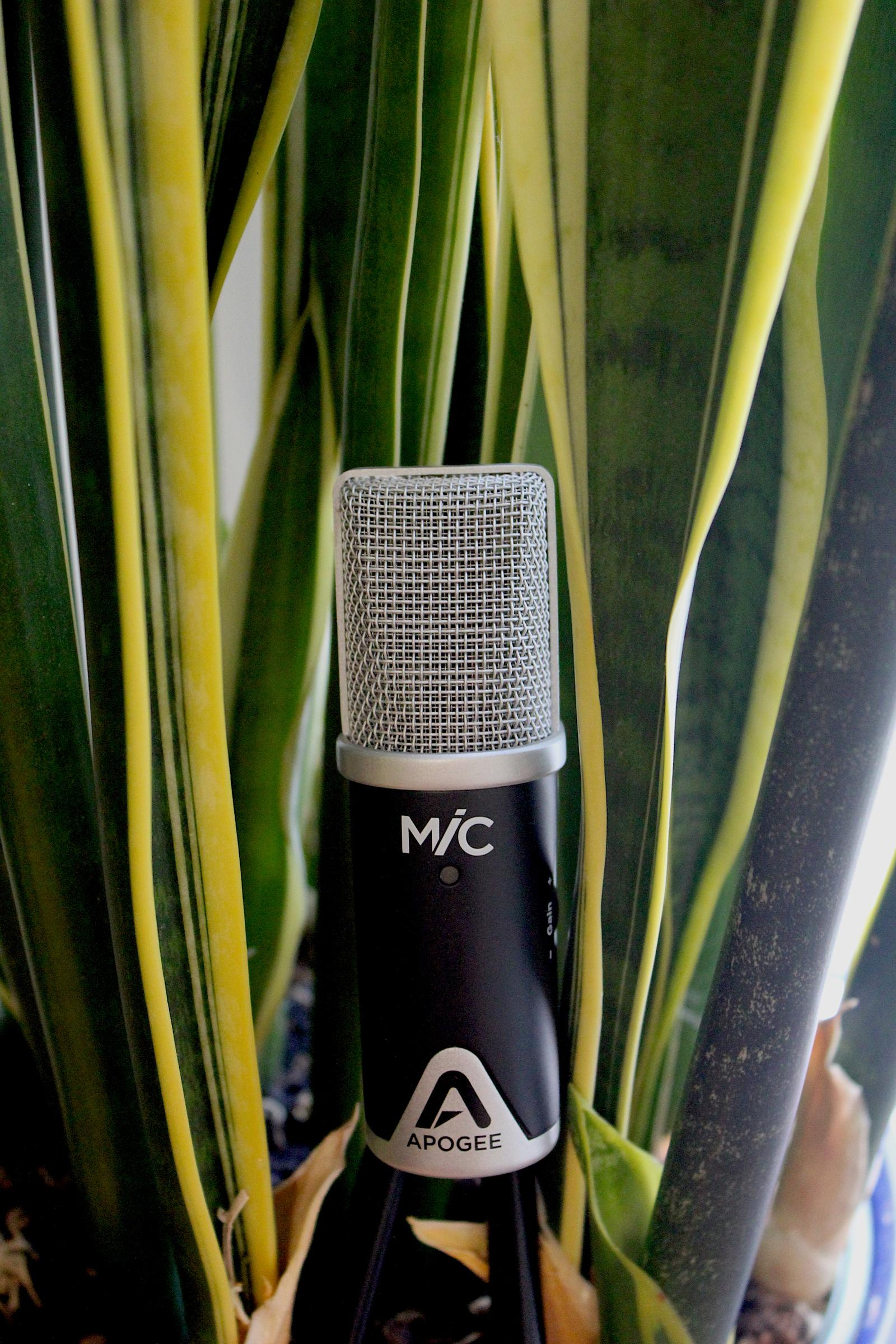 Apogee Mic Review 1