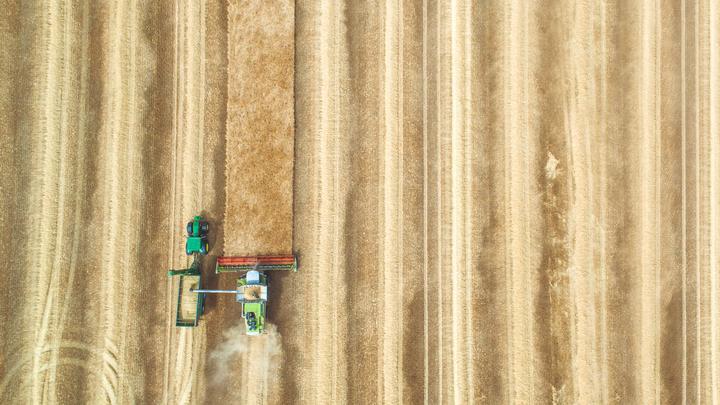 Leseliste 20170910 Niederlande Landwirtschaft