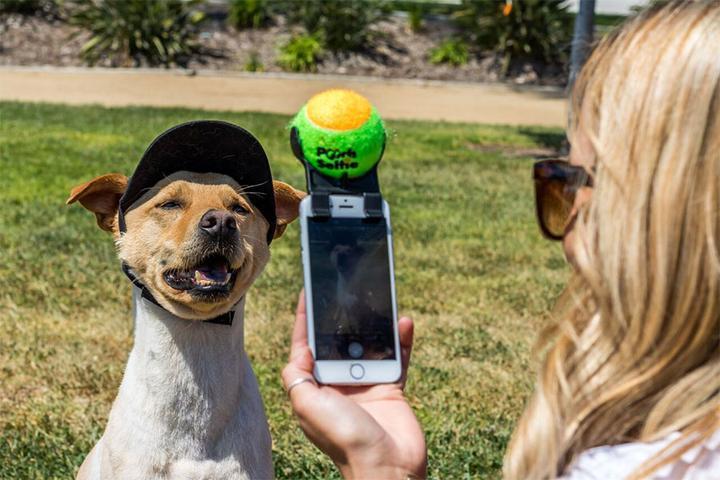 Pooch Selfie Schnapsideen