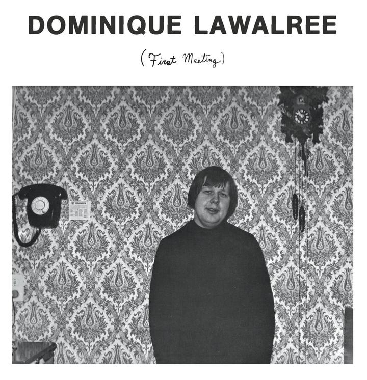 Dominique Lawalrée - Artwork