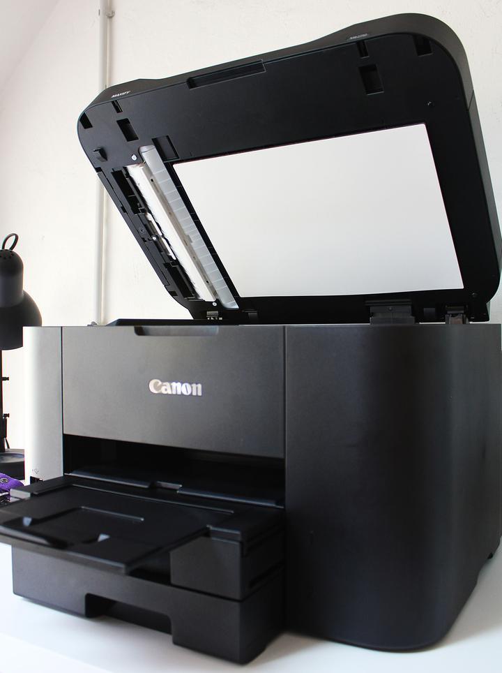 Canon Advertorial 1