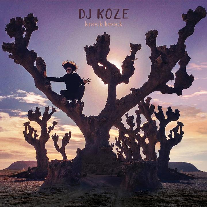 DJ Koze – Knock Knock  Cover