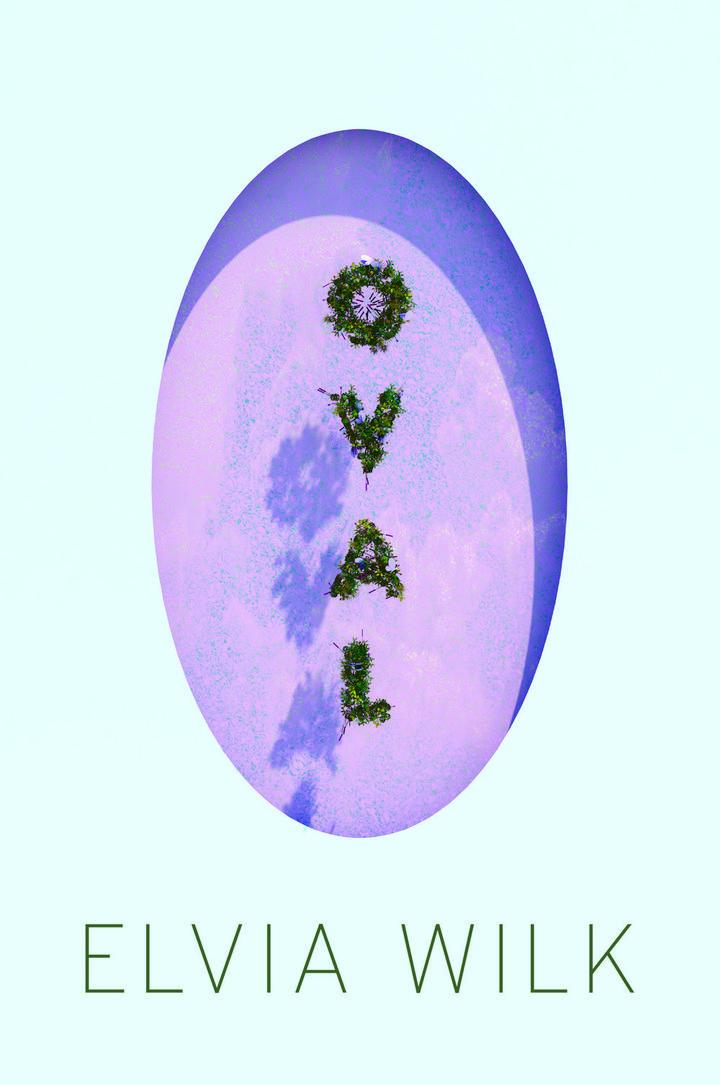 Pageturner Dezember 2019 Elvia Wilk Oval Cover neu