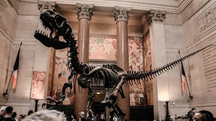 Dinosaurier LL31032019