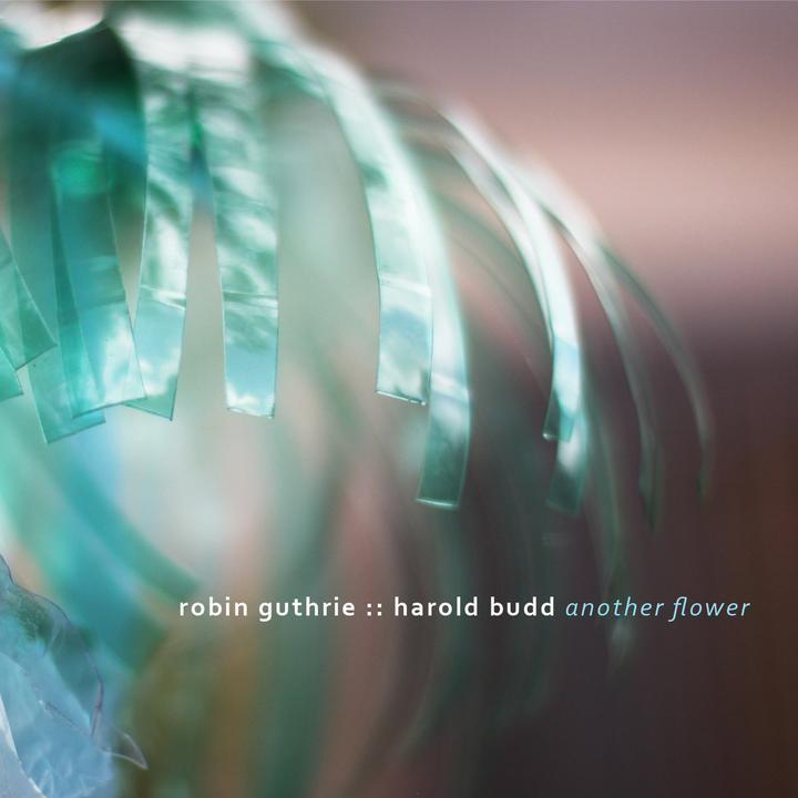 Robin Guthrie & Harold Budd – Another Flower Artwork