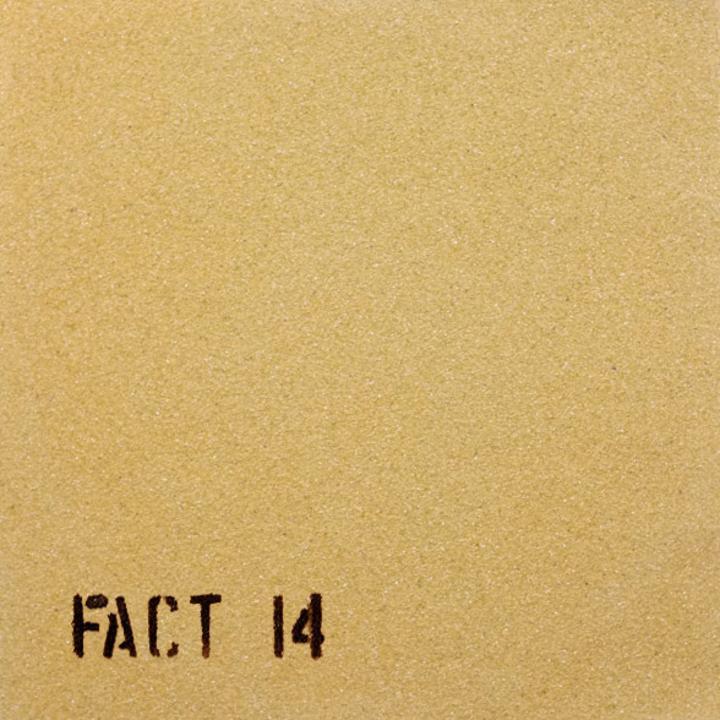 The Durutti Column - WW18122020