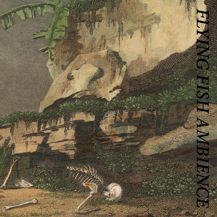 WWalkman-28052021-Rainforest Spiritual Enslavement